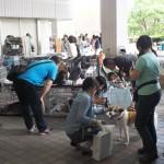 6月14日(日)は保護犬・猫の譲渡会です!