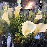 3月16日(木)はまテラスマルシェ出店者のご紹介です